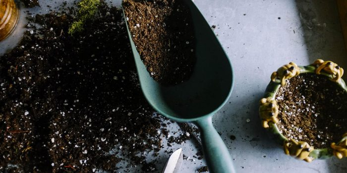 Teaching Your Children How To Garden Sustainably